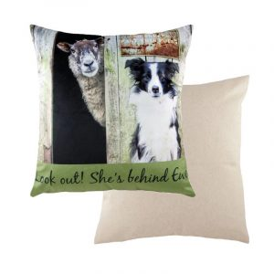 Behind Ewe cushion