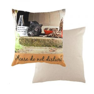 Kitchy Evans Lichfield Cushion