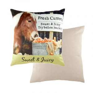 Sweet and Juicy Cushion