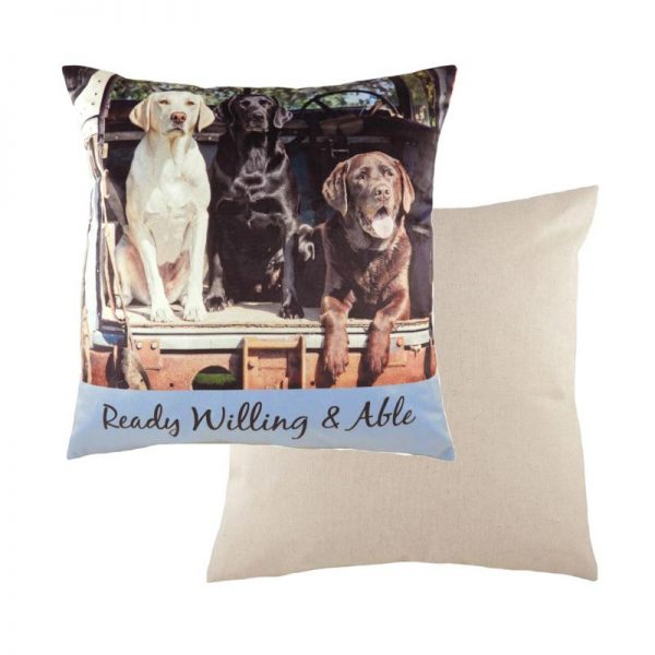 Willing & Able Cushion
